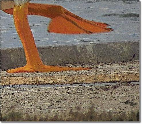 Orange ..