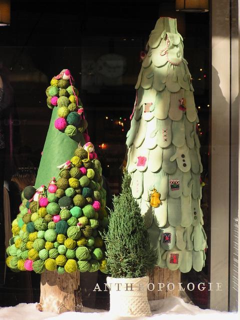 Christmas Trees (pc150181)