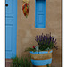 Adobe home with aqua door and chili ristra