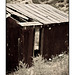 Tin shed in black and white
