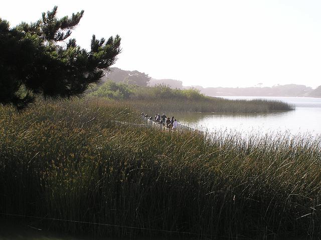 Lake Merced (p6280031)