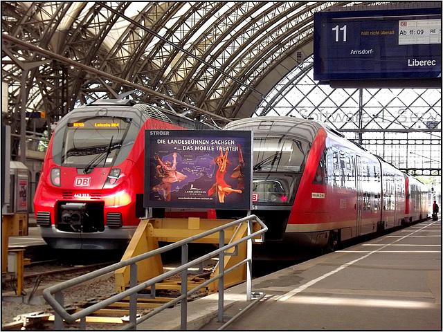 Dresden 107