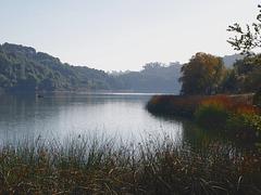 Lake Chabot (pb160888)