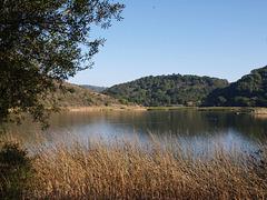 Lake Chabot (pb160884)