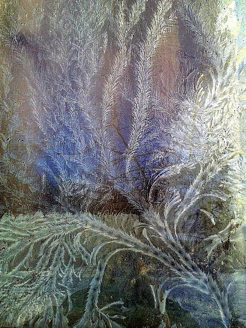 Glaciaj floroj sur la fenestrovitro