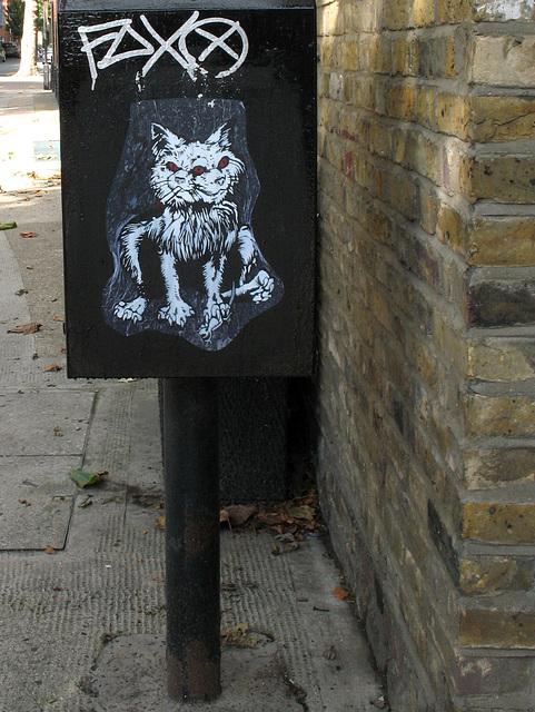 Three-eyed Cat