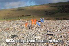 Greetings from Cuckmere Haven - 21.1.2014