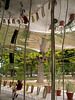 Serpentine Pavilion 2009 (Bunny ears)