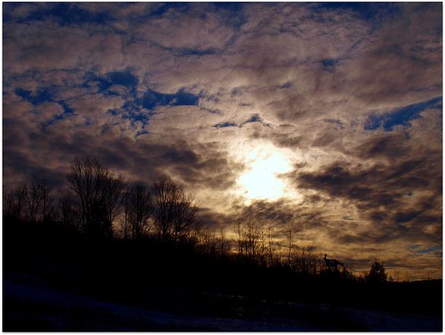 moose mountain skies