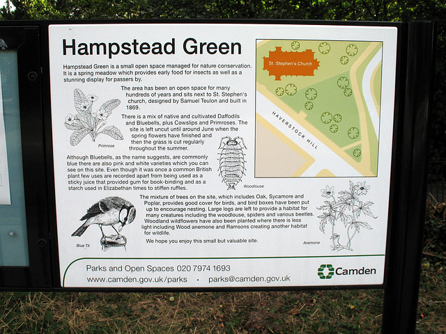 Hampstead Green