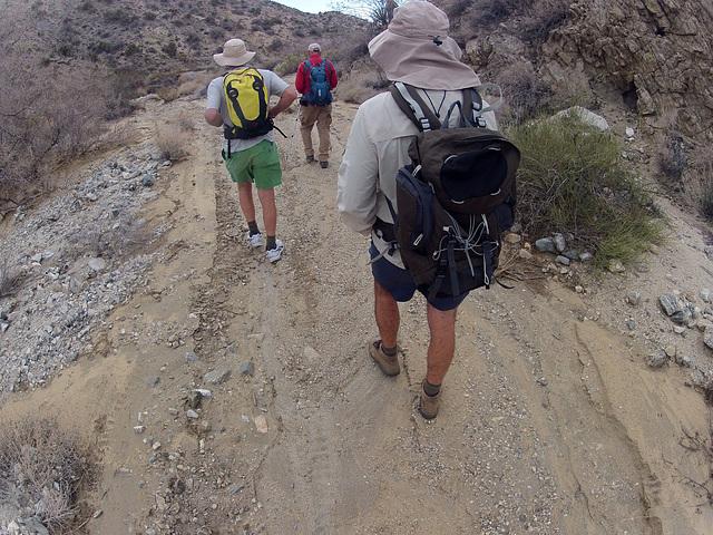 Long Canyon (01869)