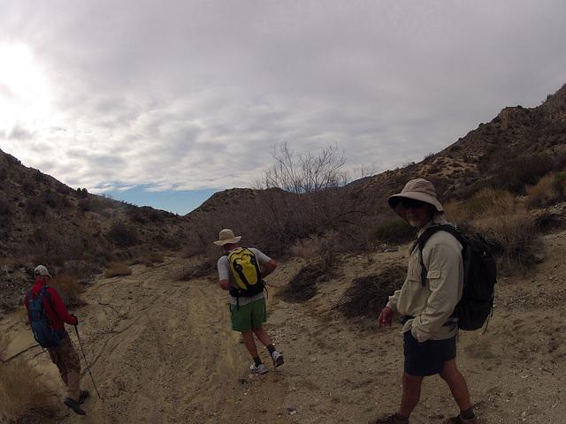 Long Canyon (01879)