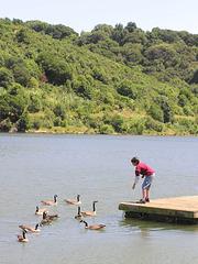 Lake Chabot (p5291710)