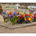 San Ysidro Church Cemetary grave with flowers