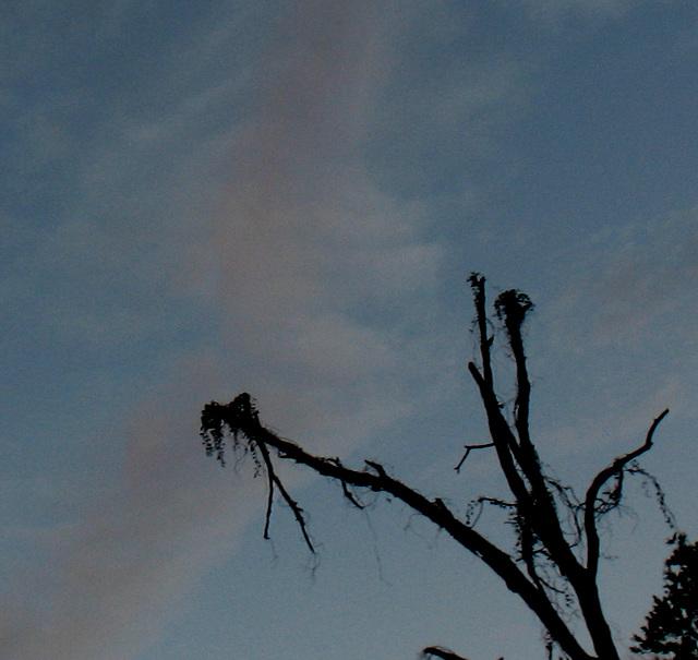 A watercolor sky ..