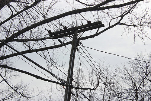 CP 4.8kV - Manchester, CT