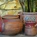 Tea Pot Cup & Plant
