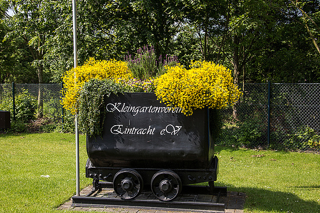 20140518 3284VRAw [D~OB] Garten, Aue, Oberhausen