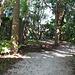 The Mangrove Walk...