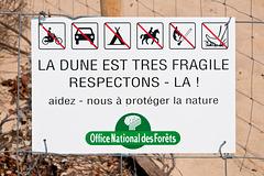 Respectez les dunes ! - 2011-04-28-_DSC6664