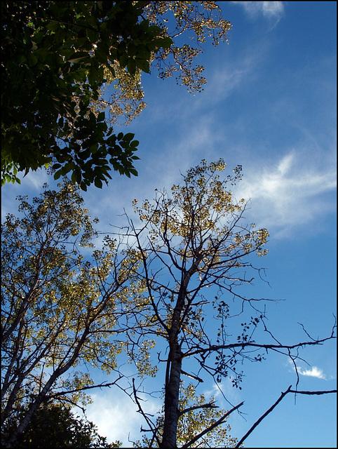 post Irene skies