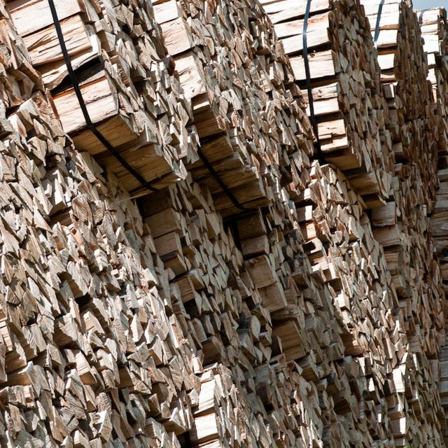 Holz, Holz, Holz - 2011-07-11-_DSC0699