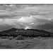 Ojito Wilderness and road in black and white