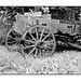 Taos wagon in black and white