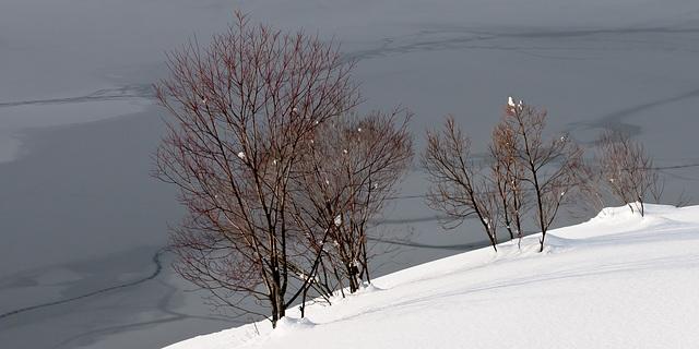 Davosersee - 2012-01-01-_DSC5784
