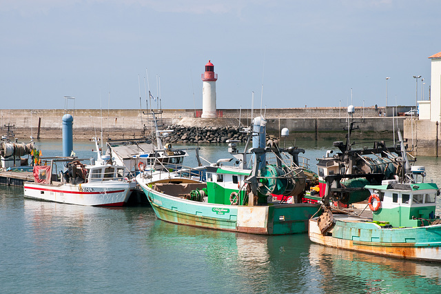 Fischerei-Hafen von La Cotinière - 2011-04-30-_DSC6941