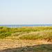 Guten Morgen! Ausblick von App. 28 über Düne auf den Atlantik - 2011-04-30-_DSC6884