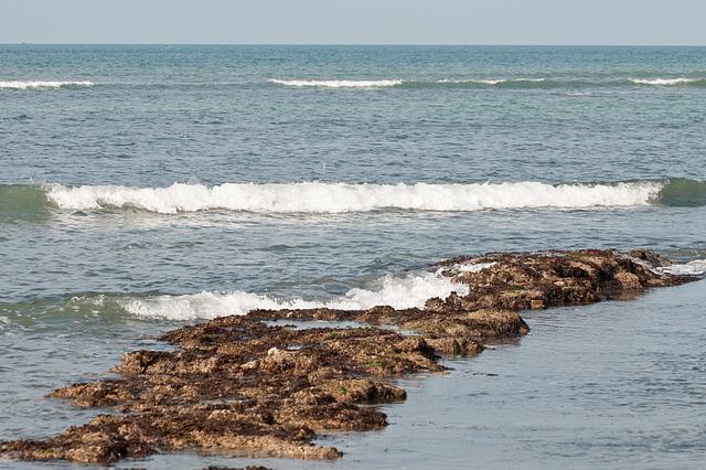 Am Rande des Atlantiks bei niedrigem Wasserstand - 2011-04-30-_DSC6901