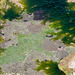Felstümpel am Rande des Atlantiks bei Ebbe - 2011-04-30-_DSC6932