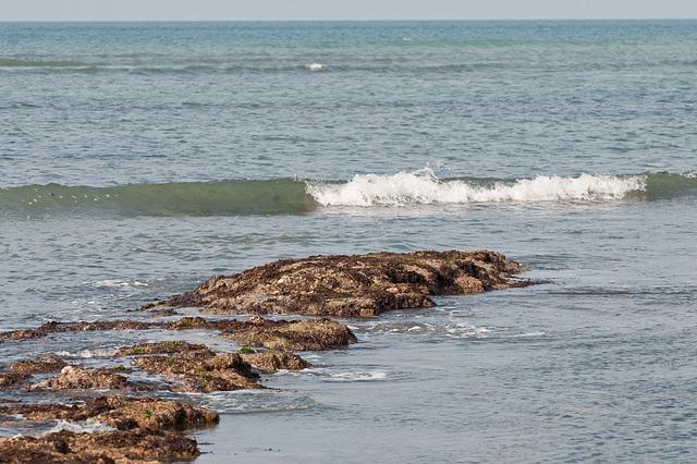 Am Rande des Atlantiks bei niedrigem Wasserstand - 2011-04-30-_DSC6900