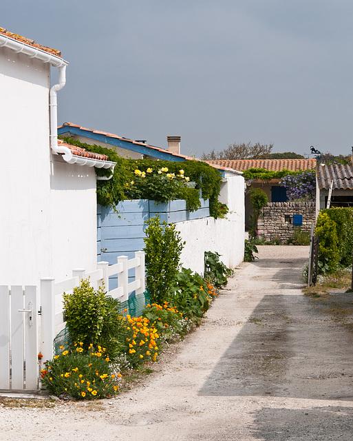 Niedere Häuser mit Gärten entlang schmaler Seitenstrasse in La Cotinière - 2011-04-29-_DSC6800