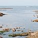 Am Rande des Atlantiks bei Ebbe - 2011-04-29-_DSC6756