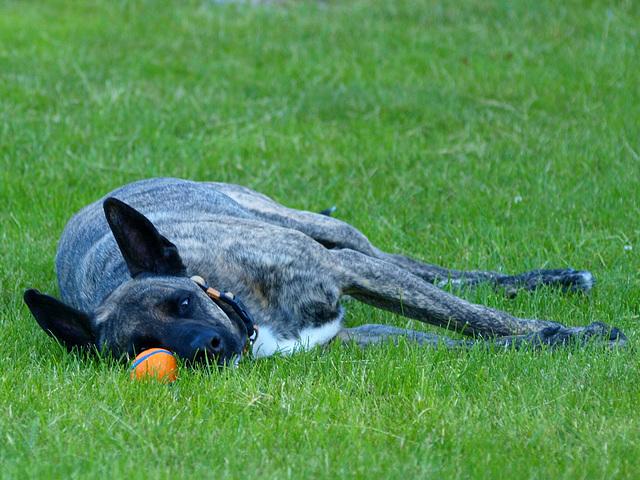 Eye on ball.  Got it.