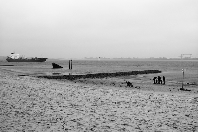 elbstrand-1180099-co-19-01-14 apx25