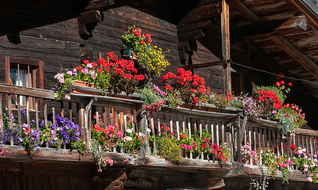 Pfelderertal, Lazins: Mit Blumen geschmückter Balkon des Gasthauses - 2010-10-15-_DSC4738