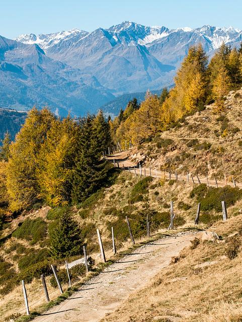 Wanderweg E5 auf der Reseggeralm - 2011-10-15-_DSC4019