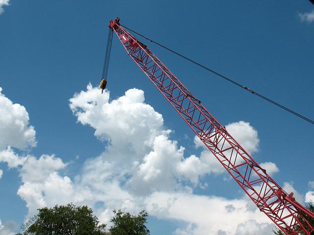 Crane of a different color ..