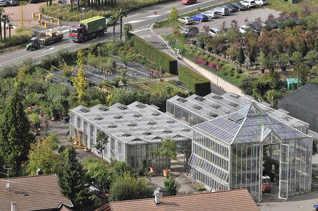 Pflanzen-Anzucht-Gärtnerei und Überwinterungs-Glashäuser - 2013-10-09-_DSC8775 - Copy