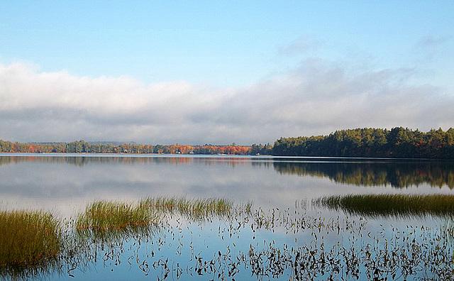 Province Lake views
