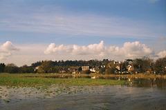Flood plain, Godalming