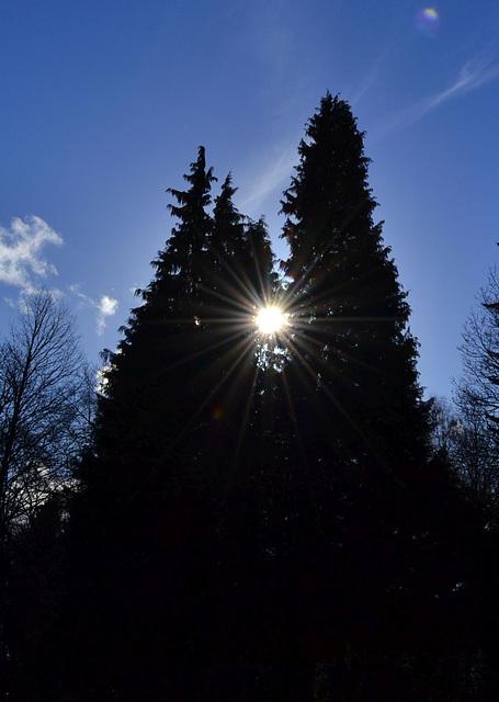 Sonnendiamant