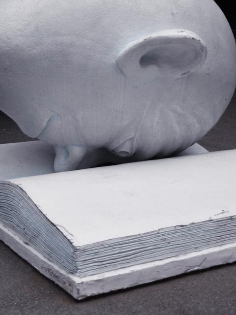 Bookhead (p5280015)