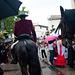 Cavalier à Mauguio.