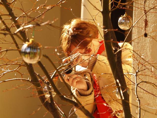 Ornaments (pc242207)