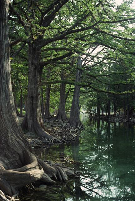 Rio Frio, Uvalde County, Texas