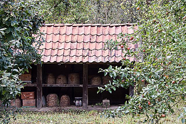 20121008 1456RAw Osnabrücker Hof, Bienenhaus